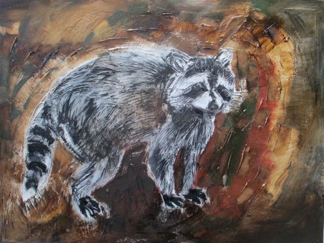 cydney-taylor-raccoon-1-1