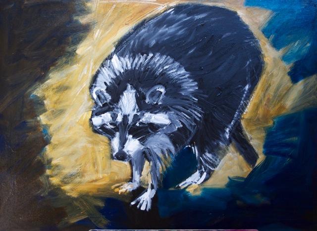 cydney-taylor-raccoon-2-1